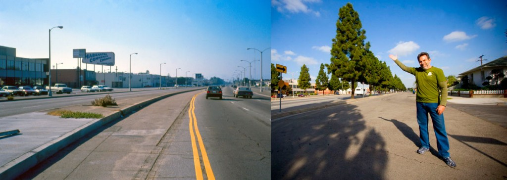 MLK Blvd. in South L.A., 1990 and 2008