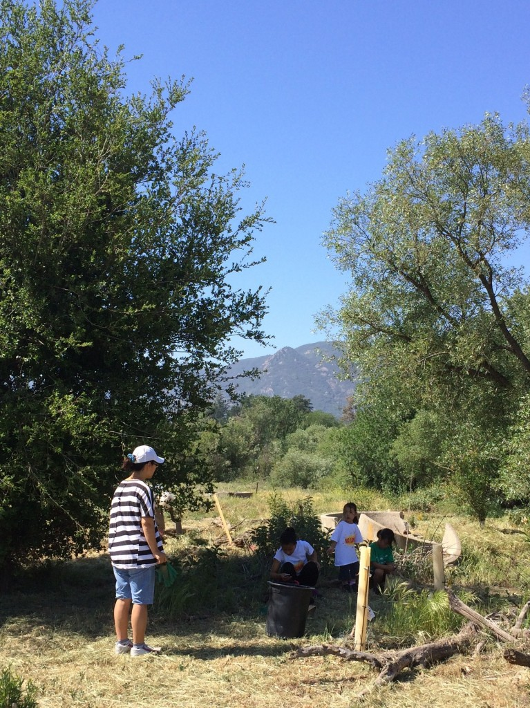 This family comes out to the Santa Monica Mountains at least once a month to volunteer together!