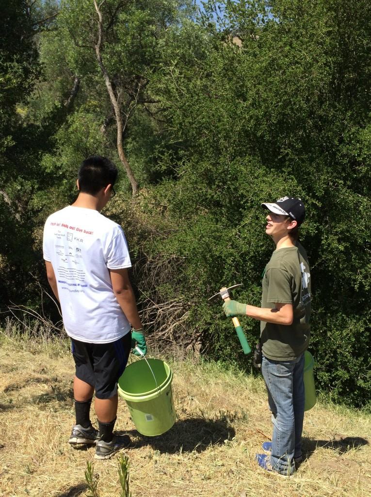 Restoration Supervisor Erik Rosenberg educates a Big Sunday volunteer on habitat restoration techniques