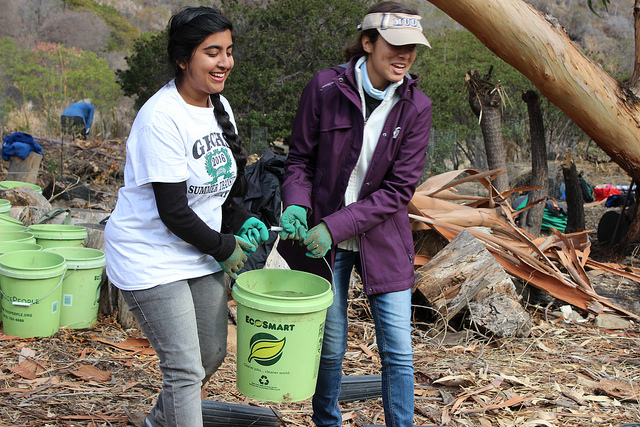 Volunteers in the Santa Monica Mountains