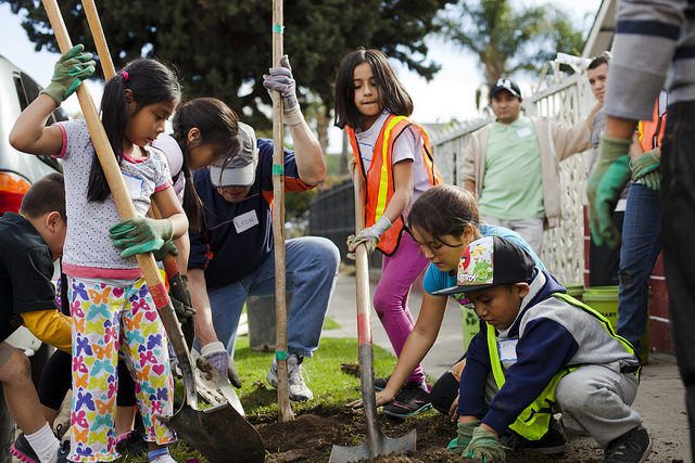 Youth volunteers at an Urban Forestry planting