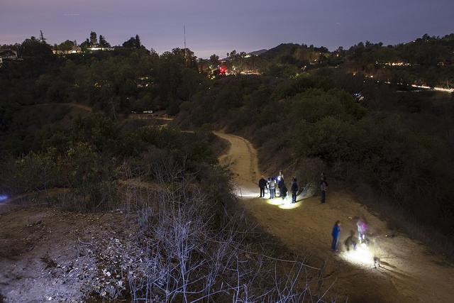 TreePeople Moonlight Hike
