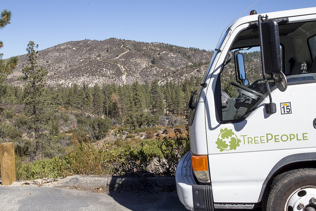 TreePeople in the Angeles Forest