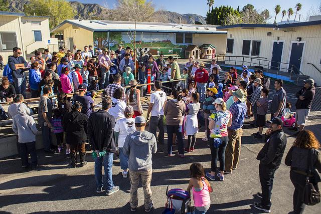 Volunteers watch a tree planting demonstration at El Dorado Elementary School.