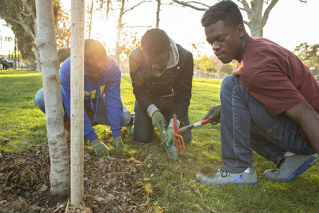 Boys and Girls Club Tree Care Event in Penmar Park