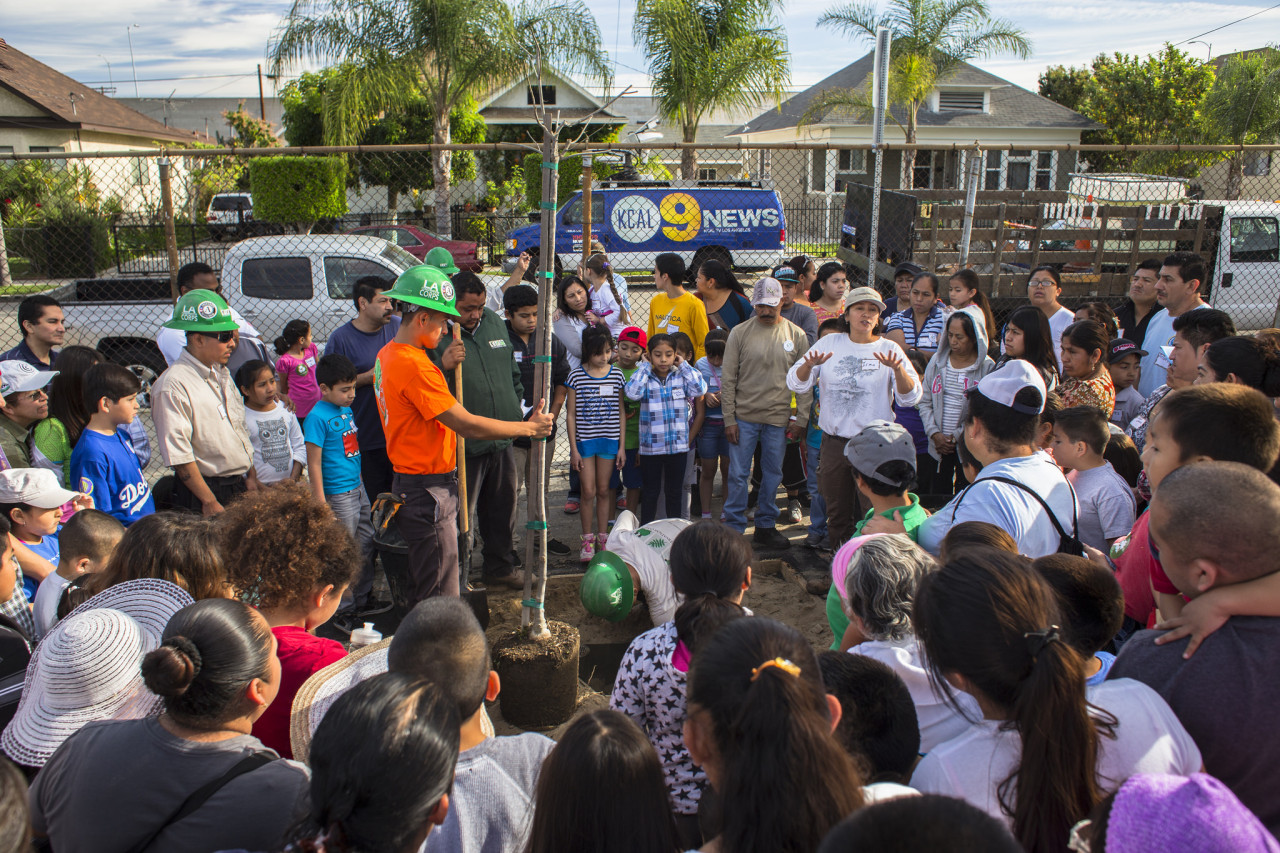 Students, teachers, and other members of the school's community gather around a new tree.