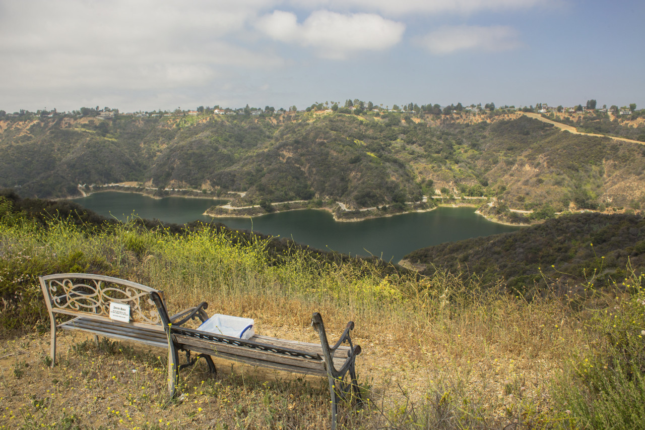 """""""Zephyr's Bench"""" and the latest edition of the reservoir journal."""