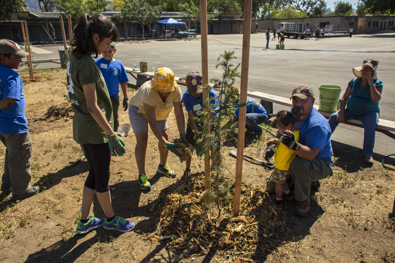 Volunteer Supervisor Cristina Garcia directed Boy Scouts and their teacher at a campus planting.