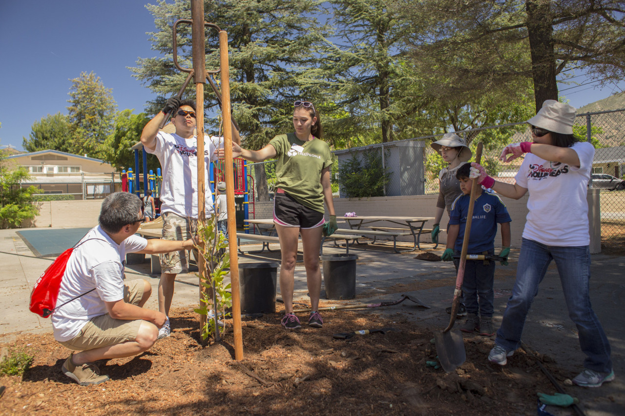 Volunteer Supervisor Arianna Yunker assists with a tree planting at Sylmar Elementary School.
