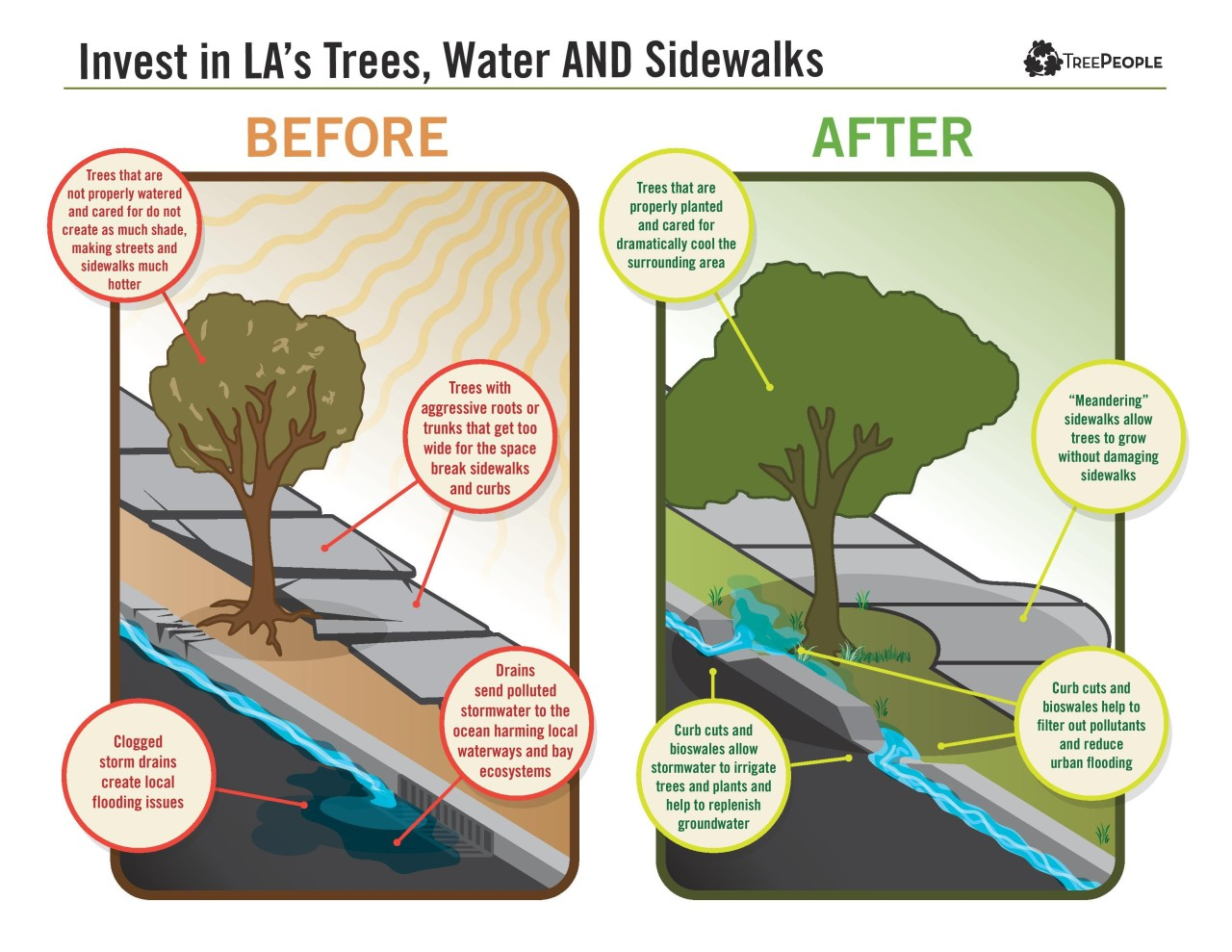 TreePeople_InfoGraph_sidewalks_v8-page-001-2